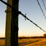 barb-wire-fences-baton-rouge